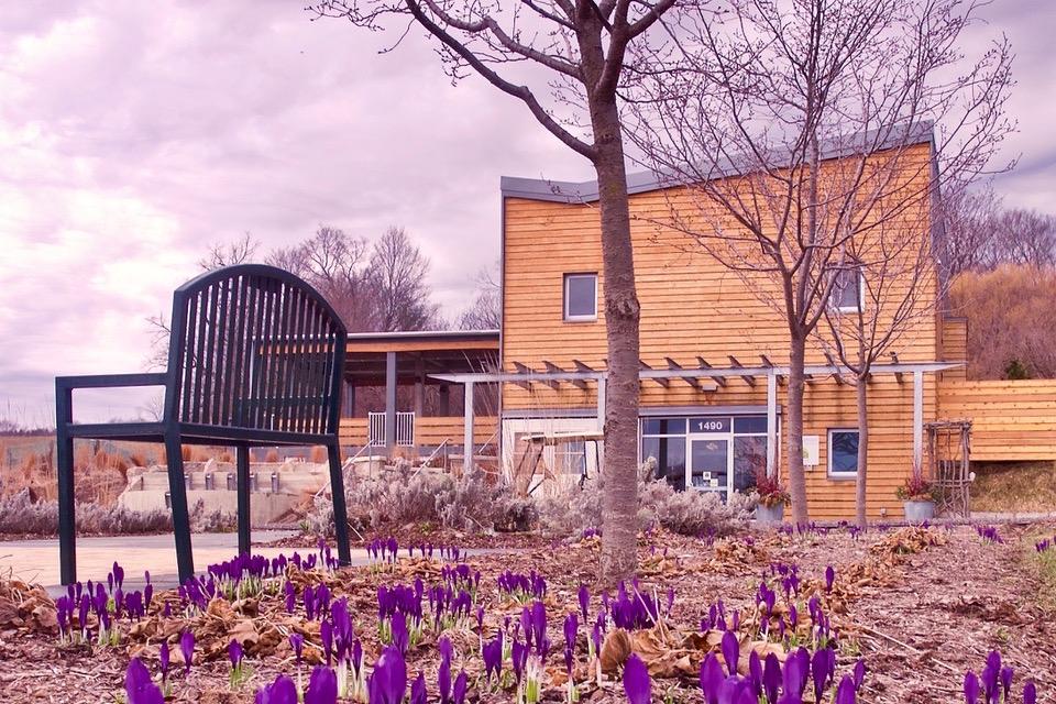 Visitor Center: Spring