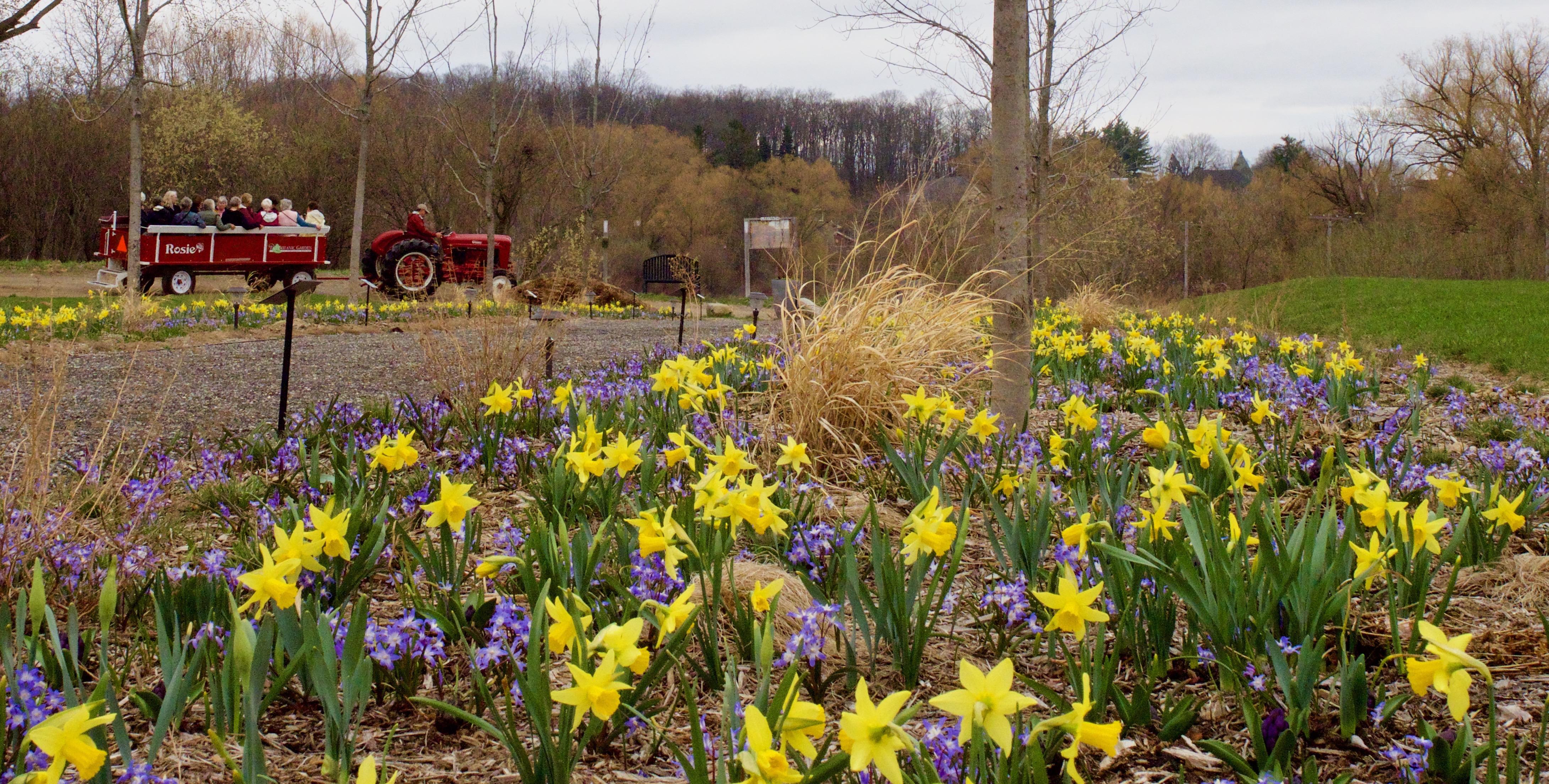 Plan Your Visit   The Botanic Garden at Historic Barns Park